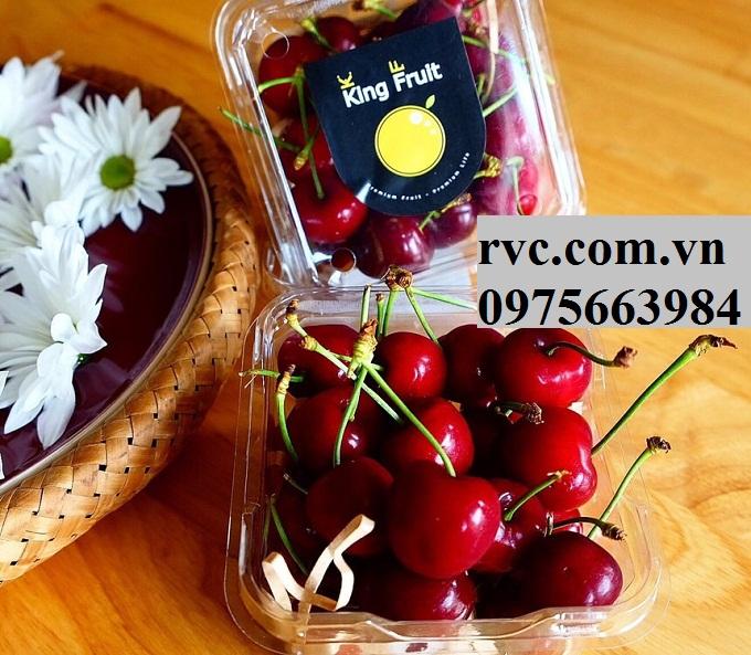 Hộp nhựa trái cây P250A