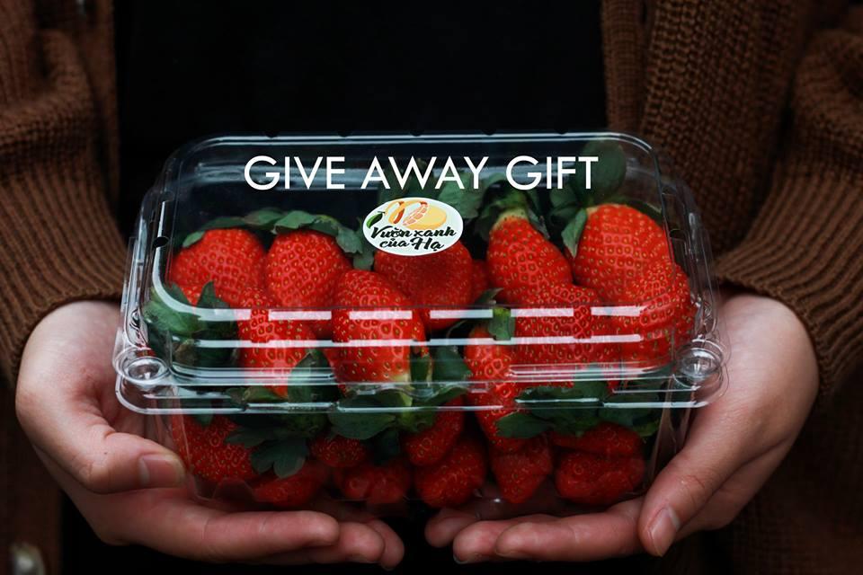 hộp nhựa trái cây 500B