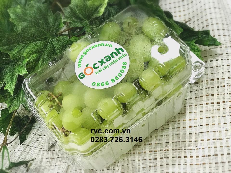 Hộp nhựa trái cây trong