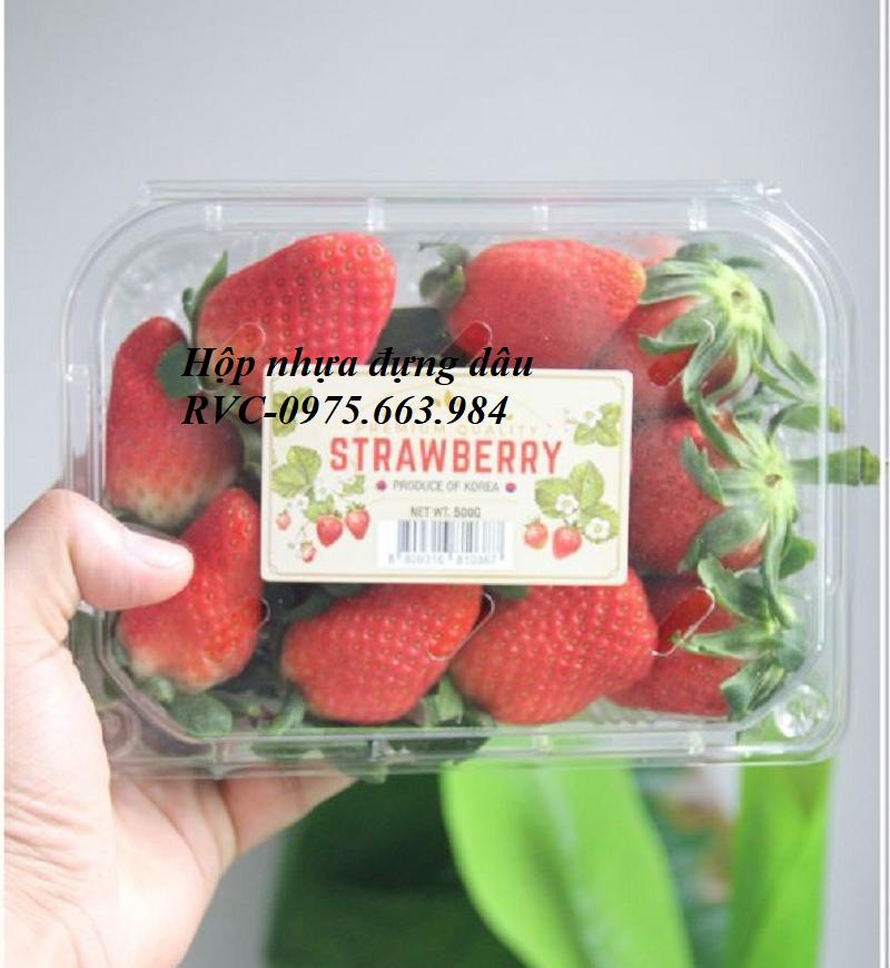 hộp nhựa đựng trái cây có lỗ