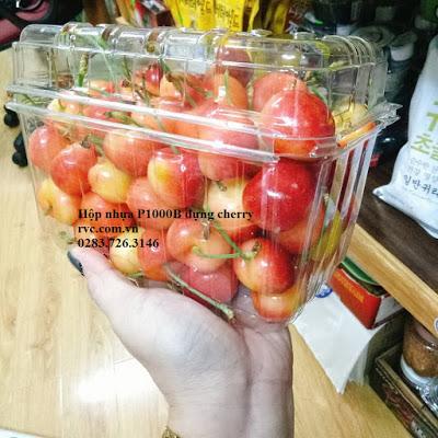hộp nhựa trái cây
