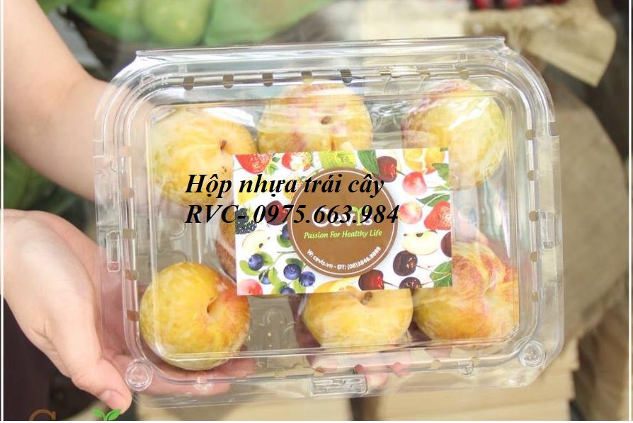 hộp nhựa đựng trái cây cao cấp