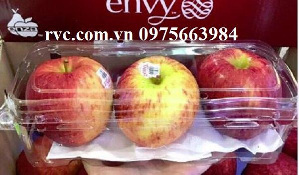 hộp nhựa đựng táo