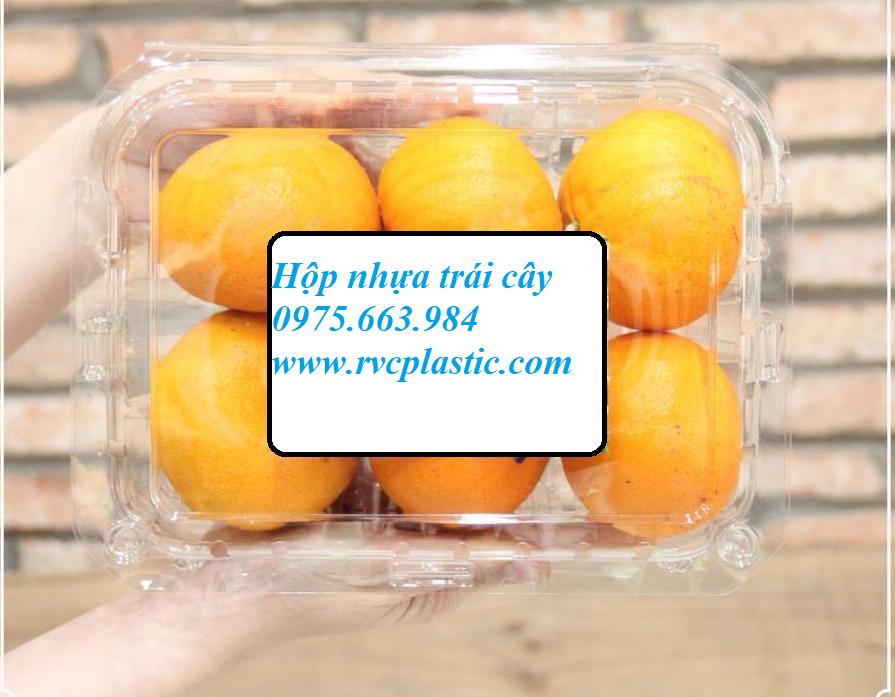 hộp nhựa đựng trái cây biếu tết
