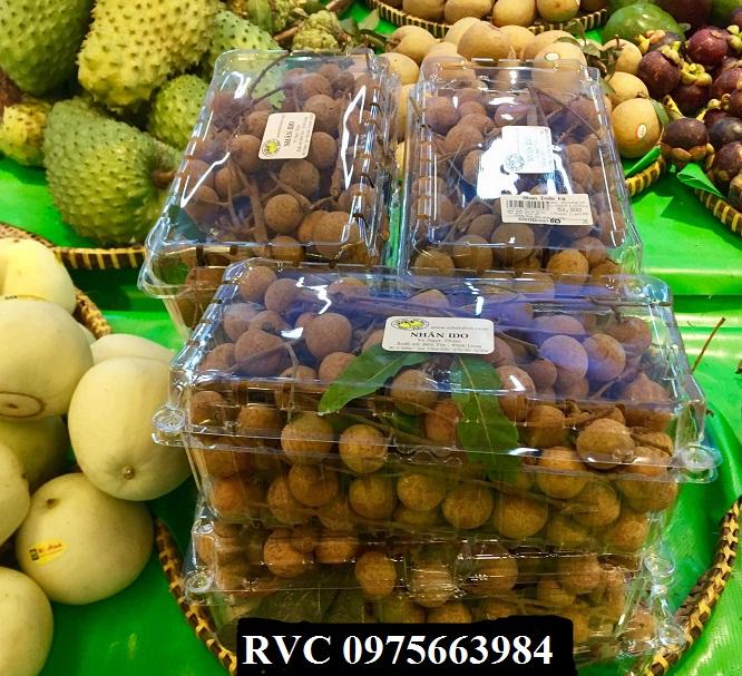 hộp nhựa trái cây P100A
