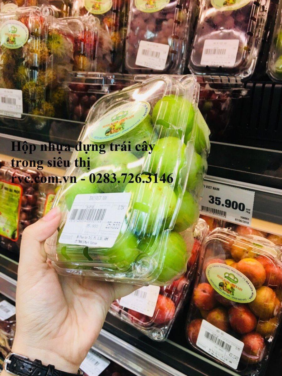 hộp nhựa trái cây P500b