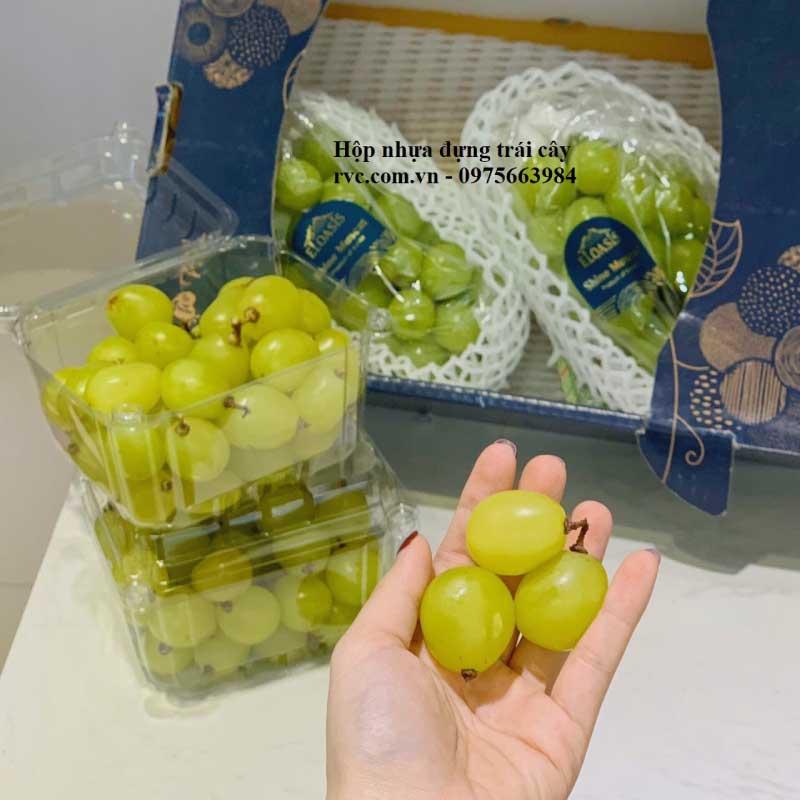 hộp nhựa trái cây P500D