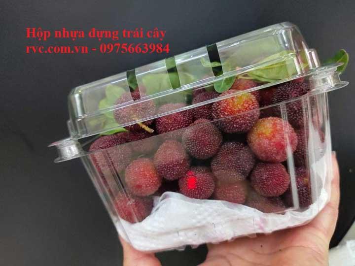 hộp nhựa trái cây 500ga đựng dâu