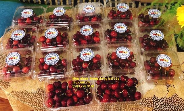 hộp nhựa trái cherry