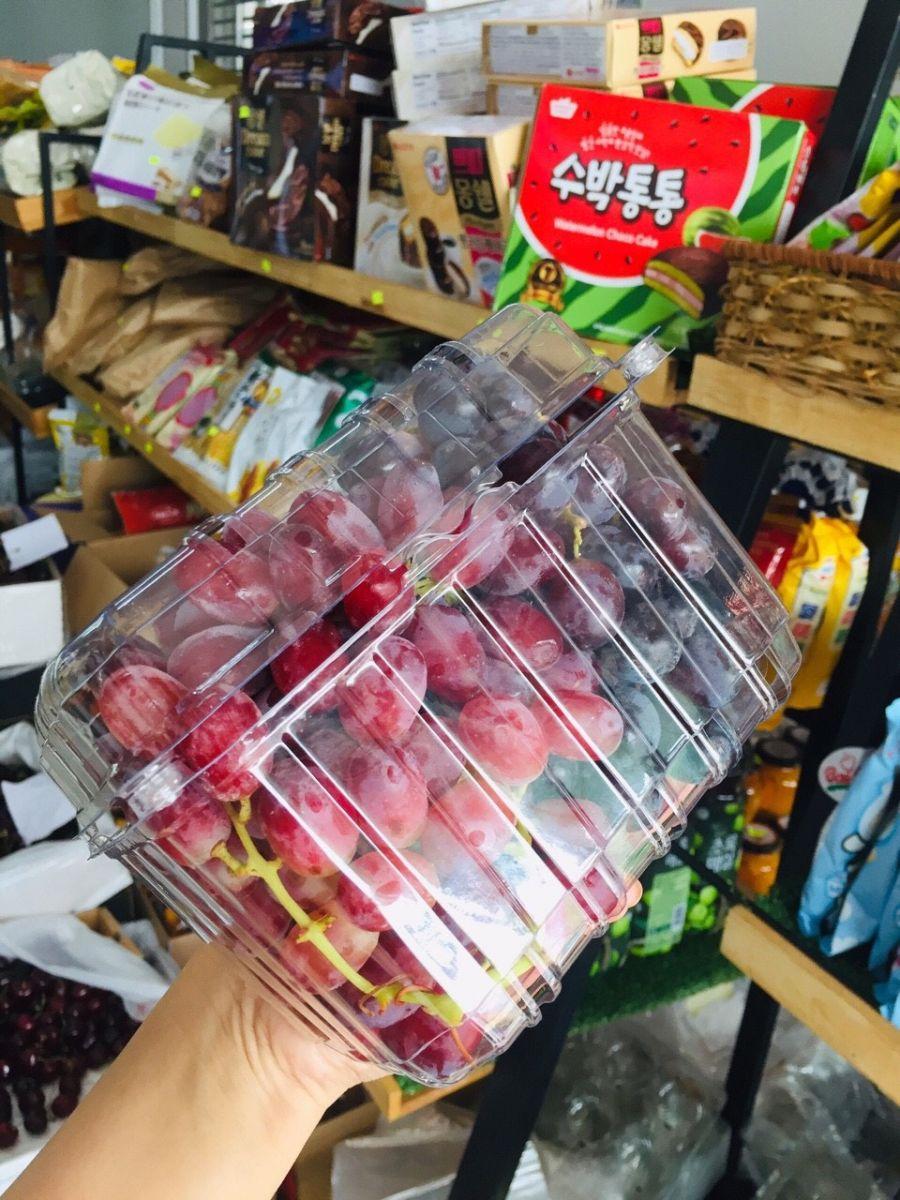 hộp nhựa đựng trái cây trong