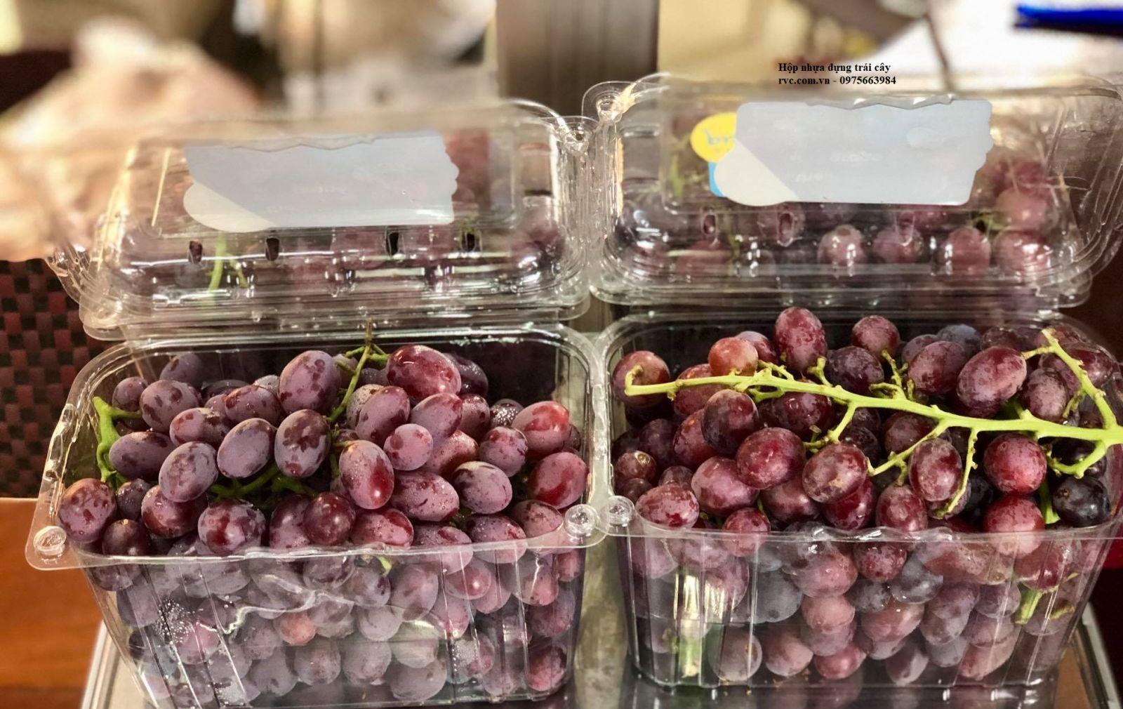 hộp nhựa đựng trái cây jadebox