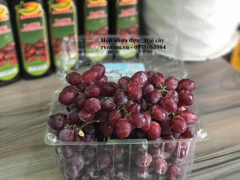 hộp nhựa đựng trái cây 1 kg