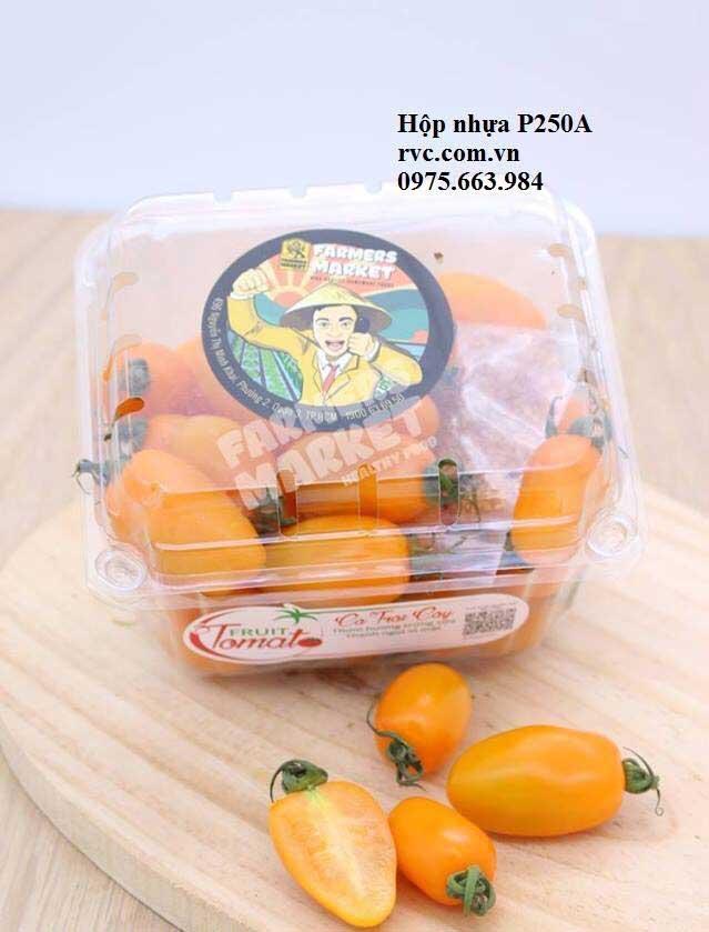 hộp nhựa đựng trái cây 500gam