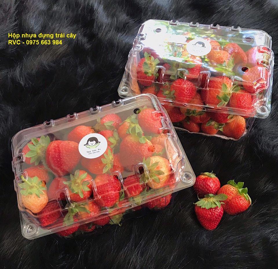 hộp nhựa đựng trái cây đẹp