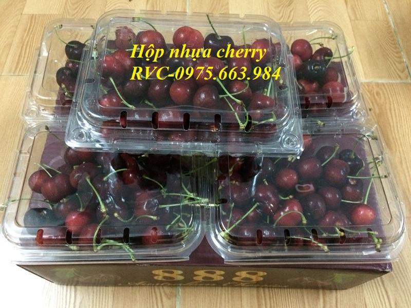 hộp nhựa cherry