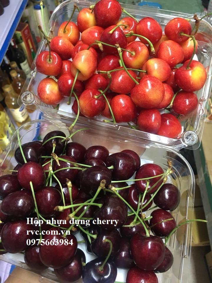 mua hộp nhựa đựng cherry